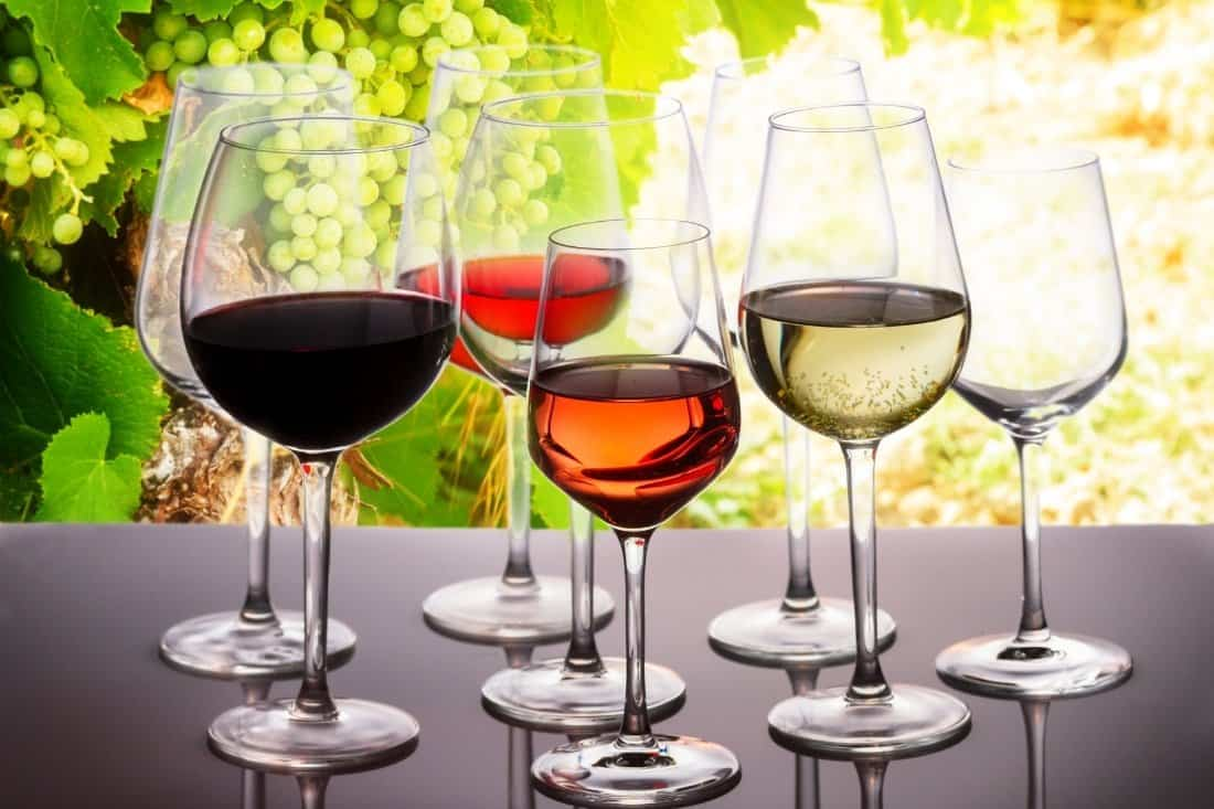 wine trivia questions and answers