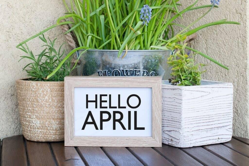 april quiz questions