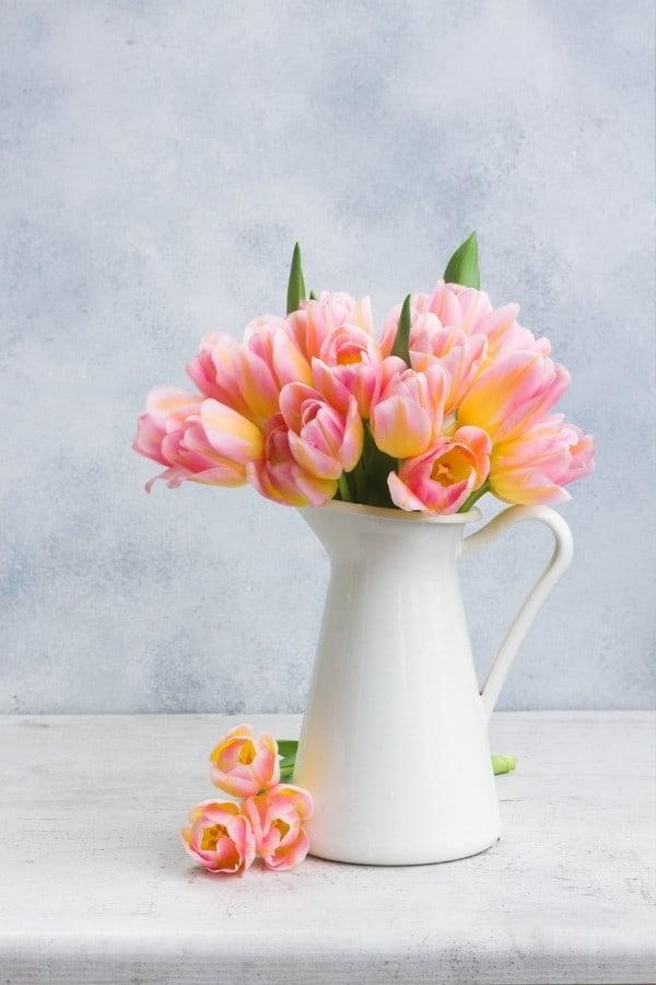 flower trivia questions