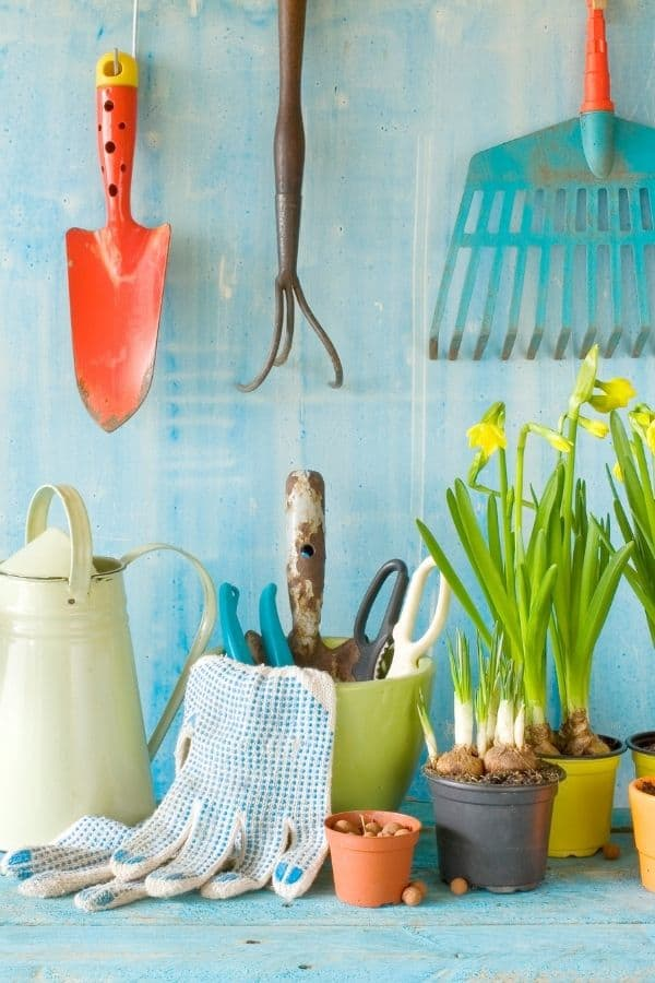 gardening quiz questions