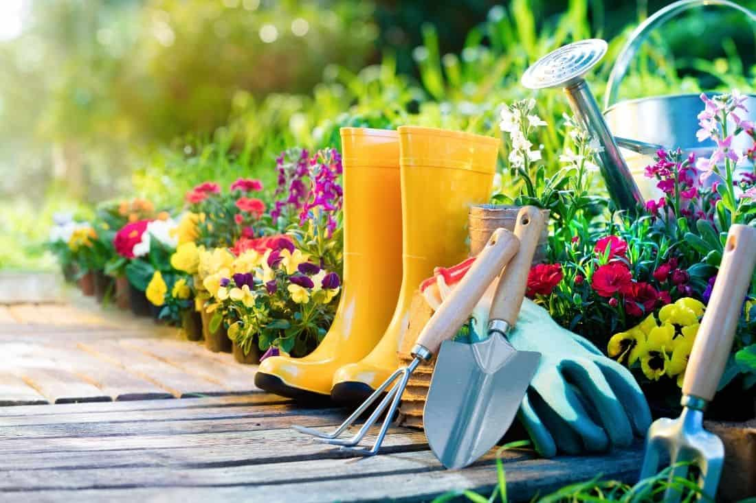 gardening quiz questions and answers