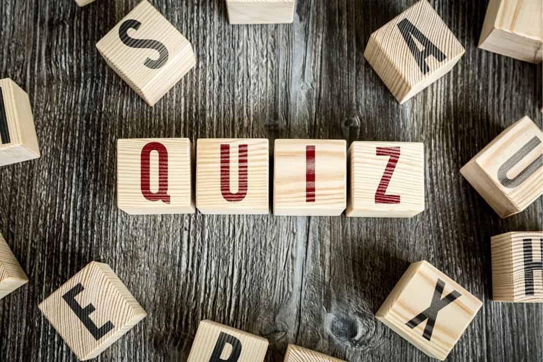 easy random trivia questions